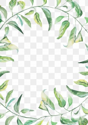 Green Watercolor Border - Watercolor Painting Drawing PNG