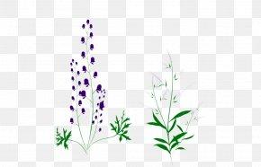 Leaf - Lavender Grasses Plant Stem Leaf Font PNG