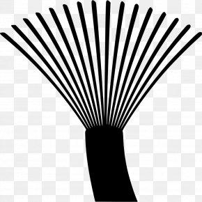 Optical Fiber Cable PNG