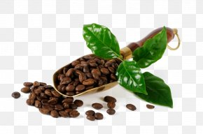 Coffee Beans - Coffee Bean Cafe Burr Mill PNG