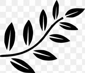 Fern - Branch Leaf Tree Clip Art PNG