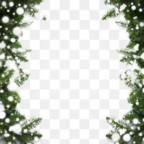 Beautiful Pine Snowflake Border Snow - Snow MIME PNG