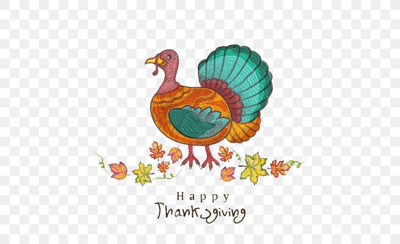 Turkey Thanksgiving Day Public Holiday, PNG, 500x500px, Turkey, Art, Beak, Bird, Chicken Download Free