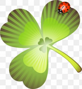 Saint Patrick's Day - Saint Patrick's Day Holiday Collage Clip Art PNG