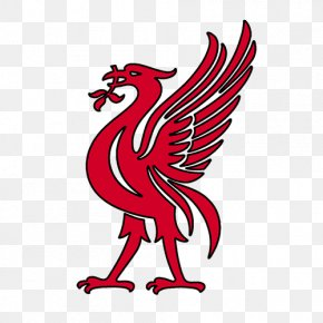 History Of Liverpool Fc Images History Of Liverpool Fc Transparent Png Free Download