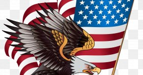 Flag - United States Of America Bald Eagle Clip Art Flag Of The United States Image PNG
