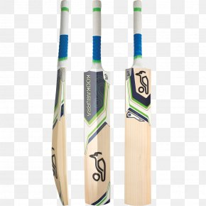 Cricket - South Africa National Cricket Team Australia National Cricket Team Cricket Bats Batting PNG
