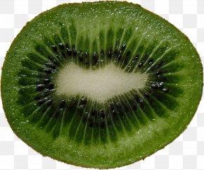 Green Cutted Kiwi Image - Kiwifruit Grapefruit PNG