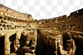 Colosseum Interior Image Building - Trevi Fountain Colosseum Palatine Hill Roman Forum Circus Maximus PNG