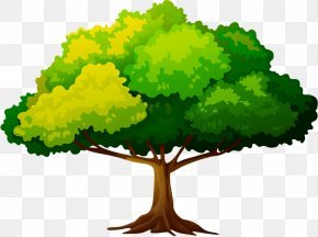 Tree - Tree Clip Art Branch Trunk Leaf PNG