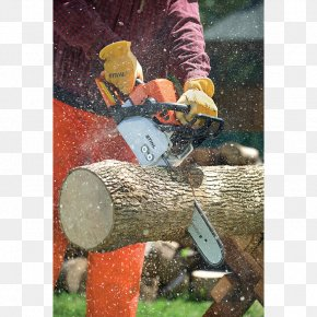 New Company Ad - Tree Stihl MS 170 Chainsaw PNG
