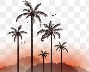 Vector Coconut Tree Sunset Seagull Plant Material - Euclidean Vector Illustration PNG