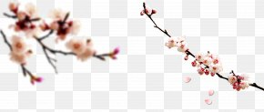 Plum Decorative Material - Chinese New Year Computer File PNG