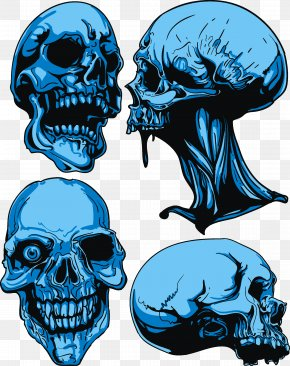 Skull - Skull Royalty-free Euclidean Vector PNG