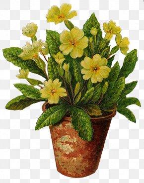 Flowers Pot - Flowerpot Vase Clip Art PNG