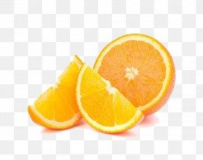 Juice - Orange Juice Orange Juice Fruit Stock Photography PNG
