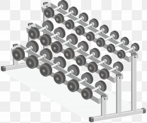 Fitness Equipment Dumbbells - Physical Exercise Fitness Centre Euclidean Vector Illustration PNG
