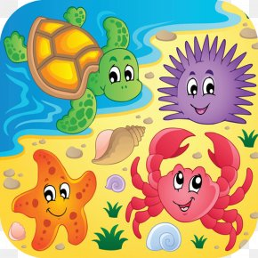 Sea Animals - Beach Aquatic Animal Clip Art PNG