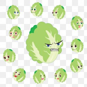 Cartoon Face More Cabbage - Chinese Cabbage Cartoon Vegetable PNG