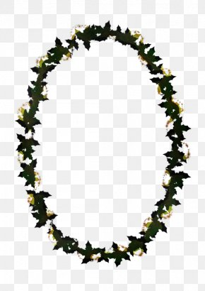 Jewellery Necklace - Lei Necklace Jewellery PNG