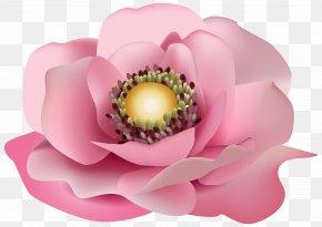 Pink Decor - Pink Floral Design Flower Clip Art PNG