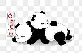Bear - Giant Panda Red Panda Coloring Book Bear Cuteness PNG