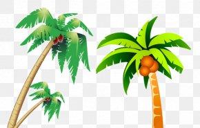 Cartoon Version Of Coconut Tree - Coconut Tree PNG