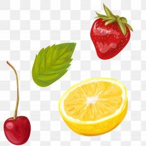 Vector Summer Fruit Yin Tao Lemon Strawberry - Sangria Cocktail Lemonade Illustration PNG
