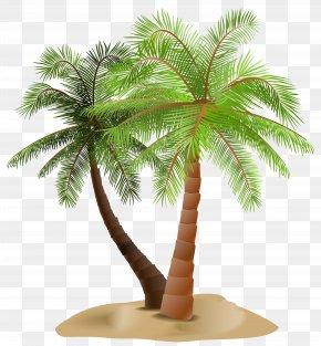 Palms In Sand Transparent Clip Art Image - Arecaceae Clip Art PNG