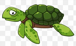 Sea Turtle - Green Sea Turtle Vector Graphics Clip Art PNG