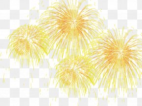 Fireworks Effect - Adobe Fireworks Icon PNG