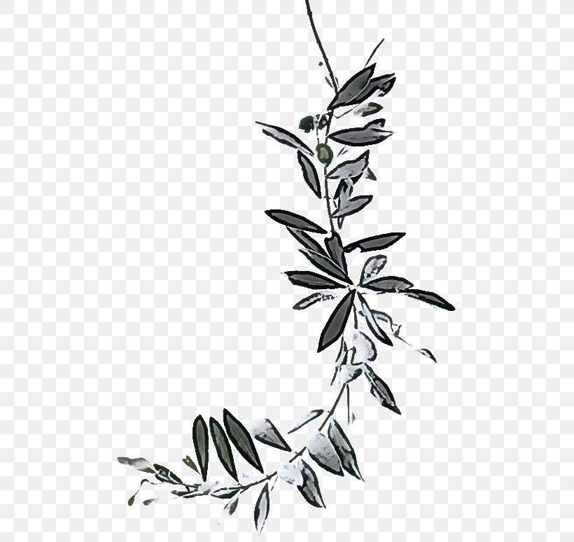 Leaf Plant Flower Plant Stem Twig, PNG, 487x774px, Leaf, Blackandwhite, Branch, Flower, Flowering Plant Download Free