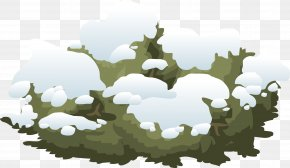 Snow Tree - Shrub Snow Clip Art PNG