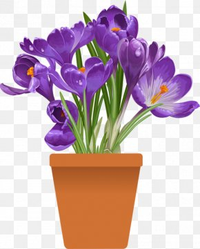 Flower Pot - Plant Flowerpot Clip Art PNG