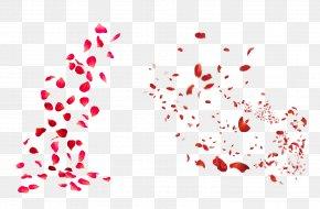 Rose Petal - Petal Rose Stock Photography Royalty-free Clip Art PNG