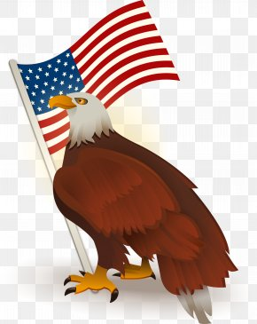 American Flag Bald Eagle - Bald Eagle Flag Of The United States Clip Art PNG
