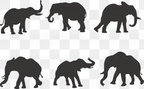 6 Elephant Silhouette Vector - African Elephant Silhouette Indian Elephant PNG