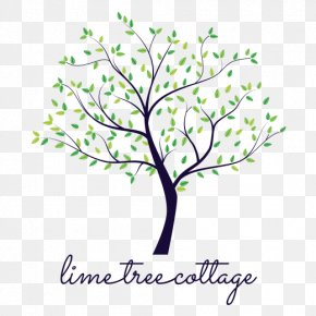 Leaf - Twig Sticker Wall Decal Floral Design Clip Art PNG