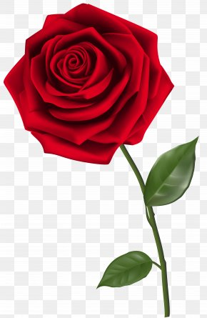 Single Red Rose Clipart Image - Rose Clip Art PNG