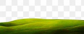 Grass Background - Green Close-up Wallpaper PNG