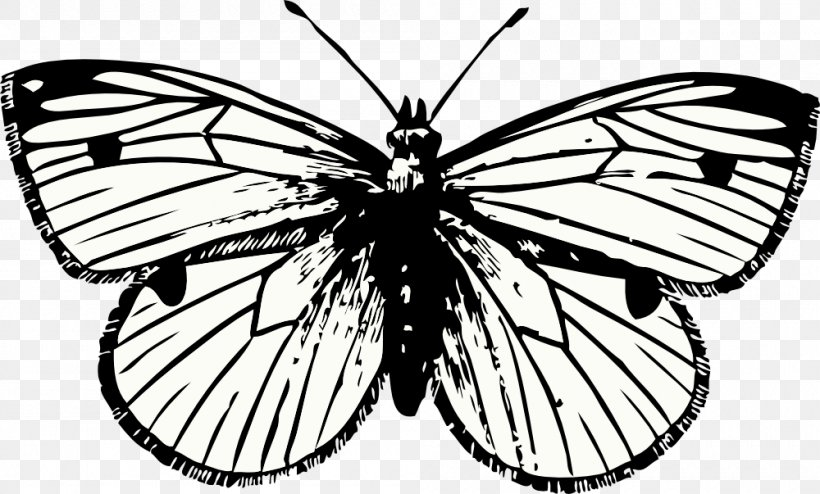 Butterfly Tattoo Drawing Clip Art, PNG, 1000x603px, Butterfly, Arthropod, Artwork, Black And White, Brush Footed Butterfly Download Free