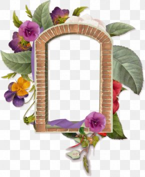 Picture Frames Paper Drawing PNG