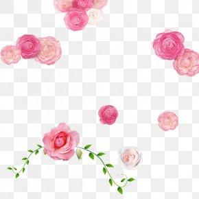 Pink Romantic Rose - Garden Roses Rosa Chinensis Beach Rose Pink PNG