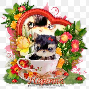 Puppy - Dog Breed Shih Tzu Puppy Companion Dog Yorkshire Terrier PNG