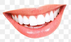 Smile - Smile Mouth Human Tooth PNG