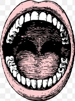 Smile - Mouth Lip Clip Art PNG
