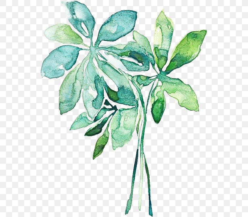 Leaf Plant Flower Tree Plant Stem, PNG, 551x716px, Leaf, Flower, Plant, Plant Stem, Tree Download Free
