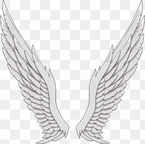 Silver Angel Wings - Angel Wing White PNG