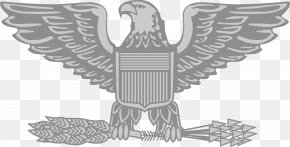 Military Eagle Cliparts - Lieutenant Colonel United States Army Officer Rank Insignia Military Rank PNG