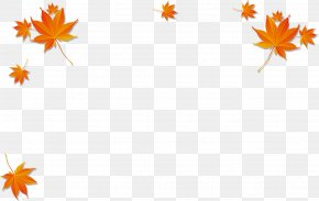Yellow Maple Leaf - Maple Leaf Autumn Poster PNG